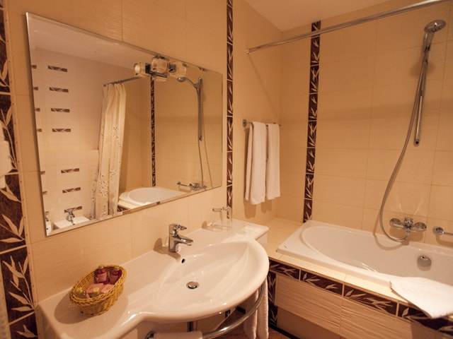http://www.hotel-delice.com.ua/images/rooms/superior-double/1431.jpg